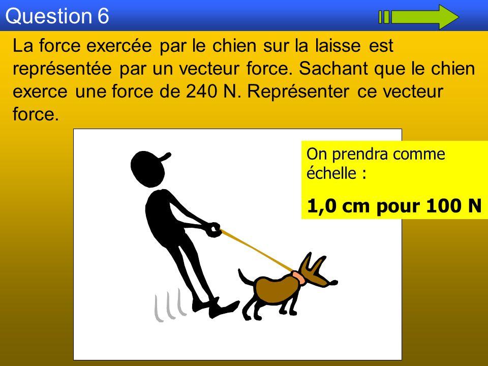 Question 6 La force exercée par le chien sur la laisse est représentée par un vecteur force. Sachant que le chien exerce une force de 240 N. Représent