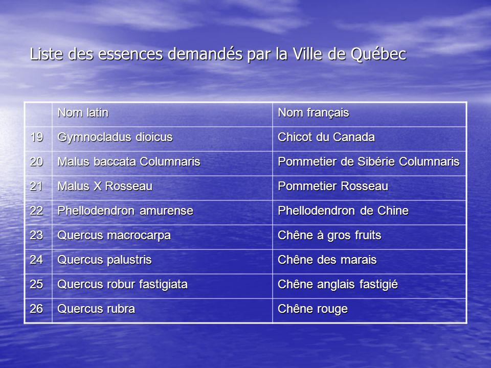 Liste des essences demandés par la Ville de Québec Nom latin Nom français 19 Gymnocladus dioicus Chicot du Canada 20 Malus baccata Columnaris Pommetie