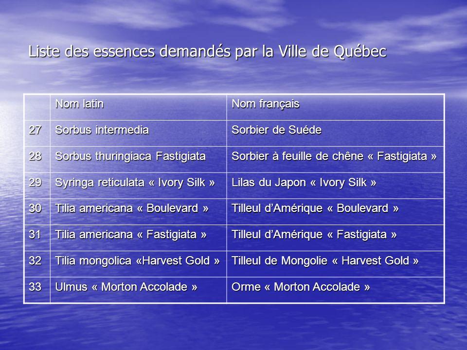 Liste des essences demandés par la Ville de Québec Nom latin Nom français 27 Sorbus intermedia Sorbier de Suéde 28 Sorbus thuringiaca Fastigiata Sorbu