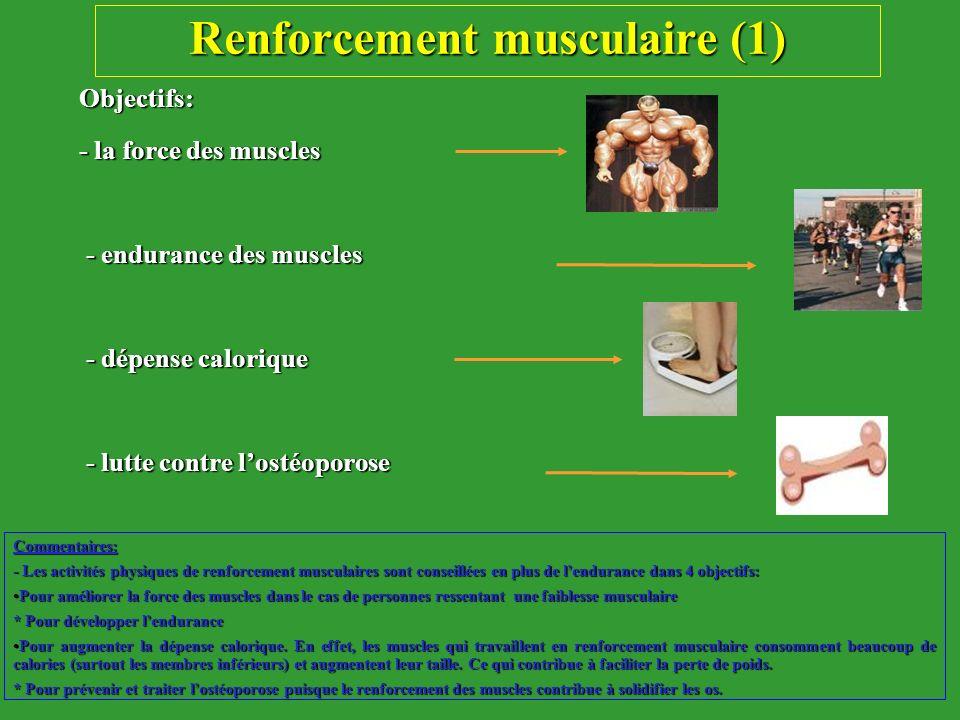 Renforcement musculaire (1) Objectifs: - la force des muscles - endurance des muscles - endurance des muscles - dépense calorique - dépense calorique