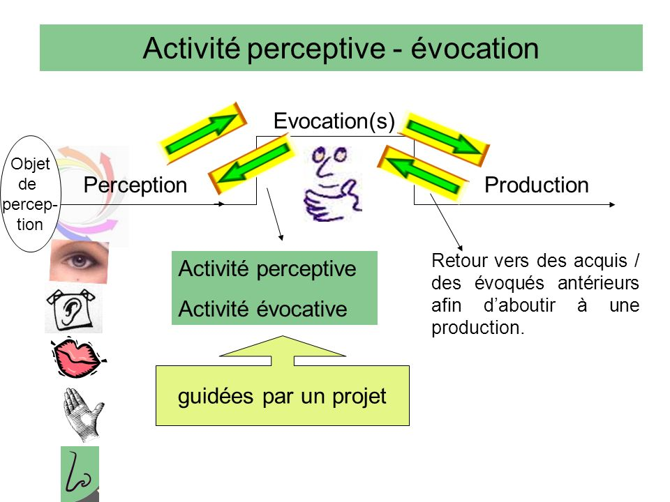 Activité perceptive - évocation Perception Evocation(s) Production Objet de percep- tion Activité perceptive Activité évocative guidées par un projet Retour vers des acquis / des évoqués antérieurs afin daboutir à une production.
