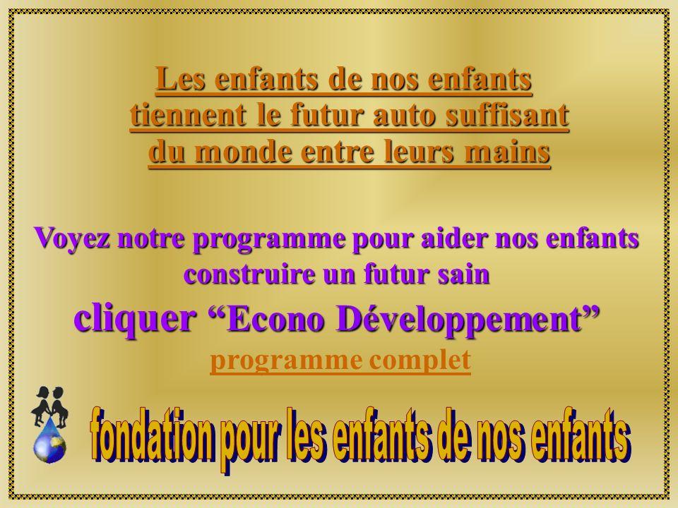 Les informations ci-incluses, spécialement relié aux projets de la fondation pour les enfants de nos enfants, demeurent la propriété de la Fondation e