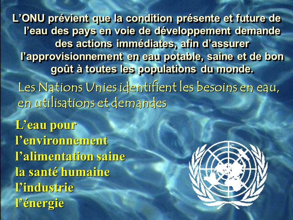 LONU prévient que la condition présente et future de leau des pays en voie de développement demande des actions immédiates, afin dassurer lapprovisionnement en eau potable, saine et de bon goût à toutes les populations du monde.