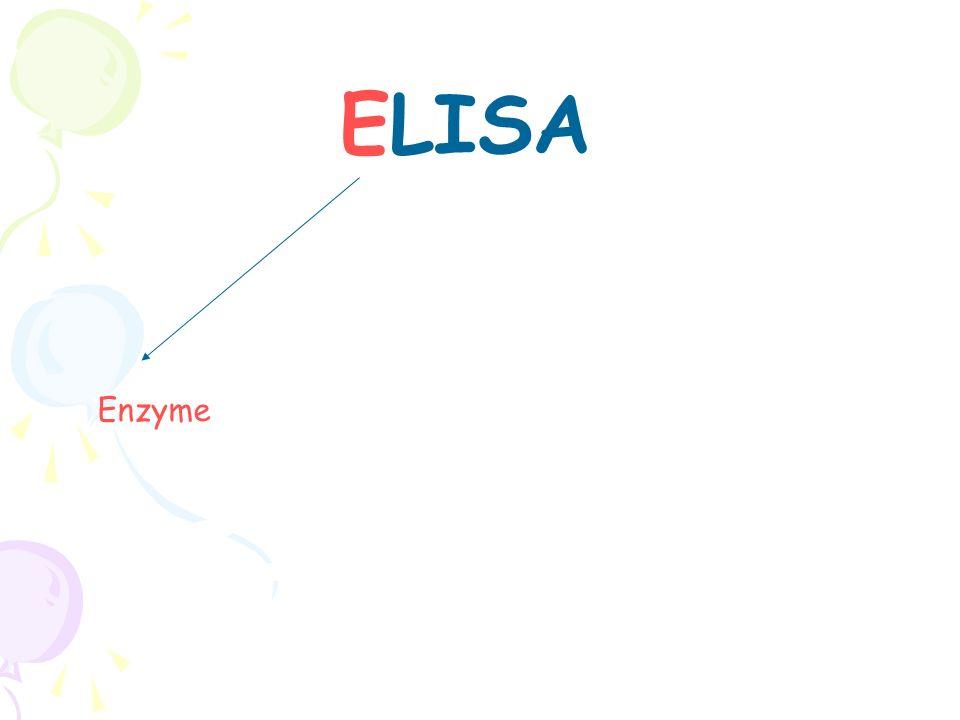Les ELISA en phase hétérogène ELISA par compétition Compétition au niveau de lanticorps Anticorps à doser Compétition au niveau de lantigène Antigène à doser E E S P S P E E S P S P