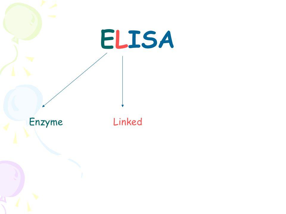 Enzyme ELISA