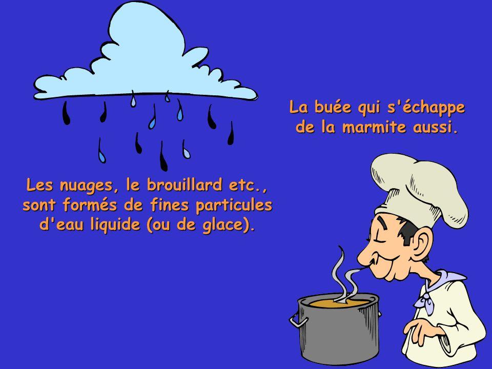 11 La buée qui s'échappe de la marmite aussi. Les nuages, le brouillard etc., sont formés de fines particules d'eau liquide (ou de glace).