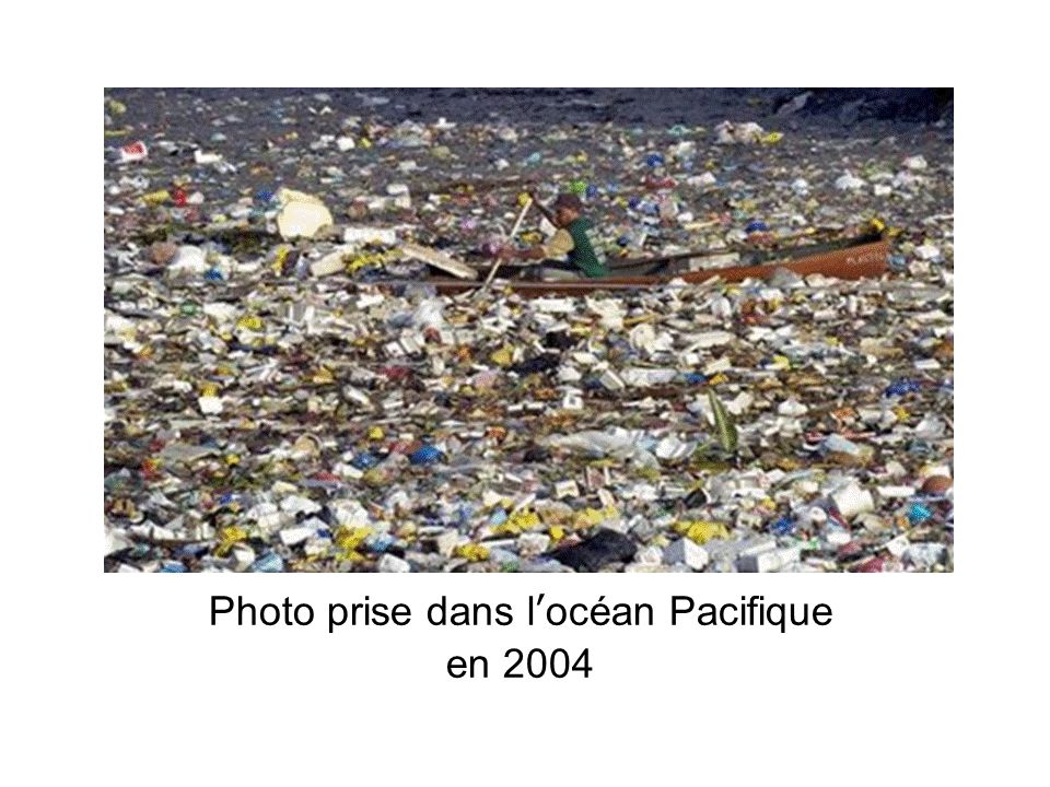 Photo prise dans locéan Pacifique en 2004