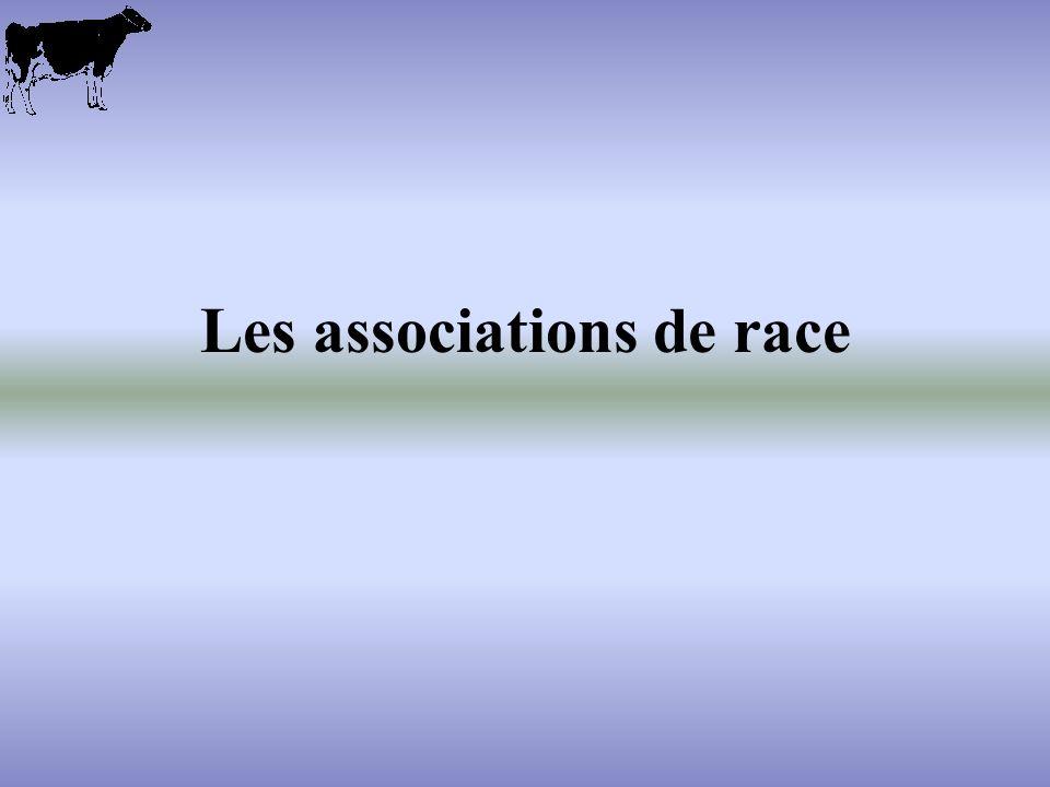 Les associations de race