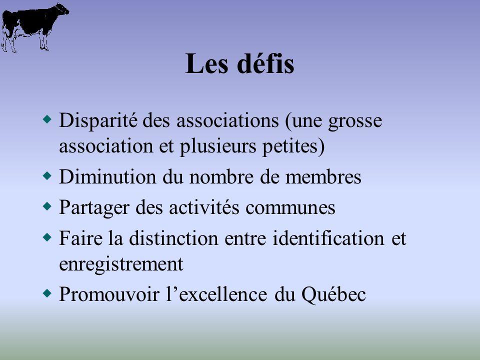 Les défis Disparité des associations (une grosse association et plusieurs petites) Diminution du nombre de membres Partager des activités communes Faire la distinction entre identification et enregistrement Promouvoir lexcellence du Québec