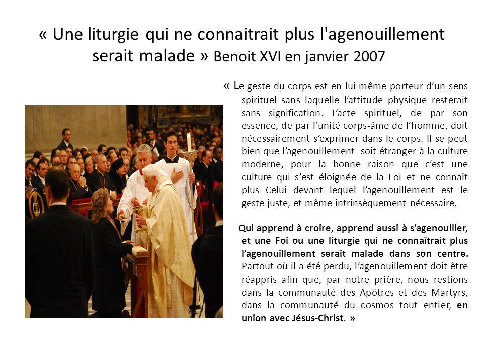 Redemptionis Sacramentum 19 mars 2004 Préambule, n°11 : « Le Mystère de l'Eucharistie est trop grand pour que quelqu'un puisse se permettre de le trai