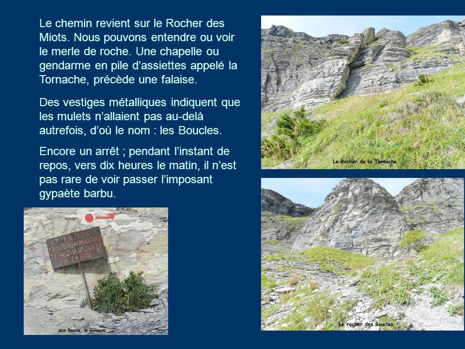 Le chemin revient sur le Rocher des Miots. Nous pouvons entendre ou voir le merle de roche. Une chapelle ou gendarme en pile dassiettes appelé la Torn