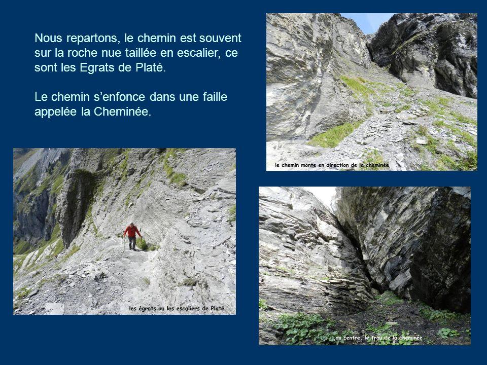 Nous repartons, le chemin est souvent sur la roche nue taillée en escalier, ce sont les Egrats de Platé. Le chemin senfonce dans une faille appelée la
