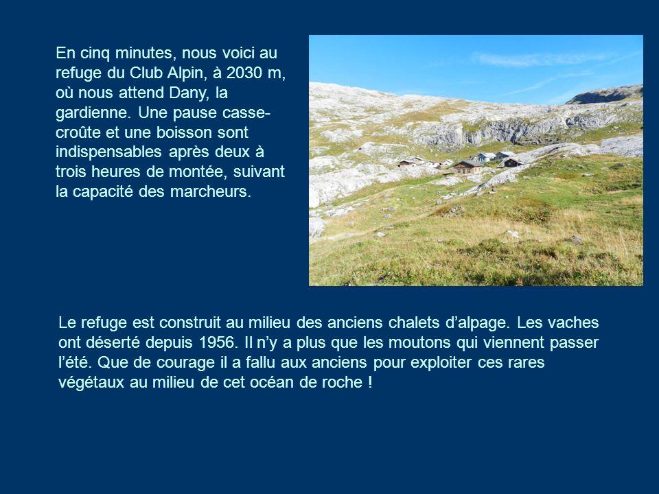 En cinq minutes, nous voici au refuge du Club Alpin, à 2030 m, où nous attend Dany, la gardienne. Une pause casse- croûte et une boisson sont indispen