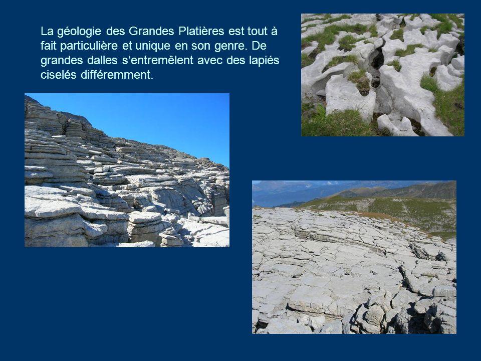 La géologie des Grandes Platières est tout à fait particulière et unique en son genre. De grandes dalles sentremêlent avec des lapiés ciselés différem