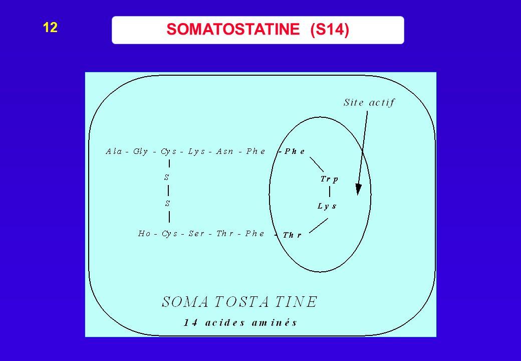 SOMATOSTATINE (S14) 12