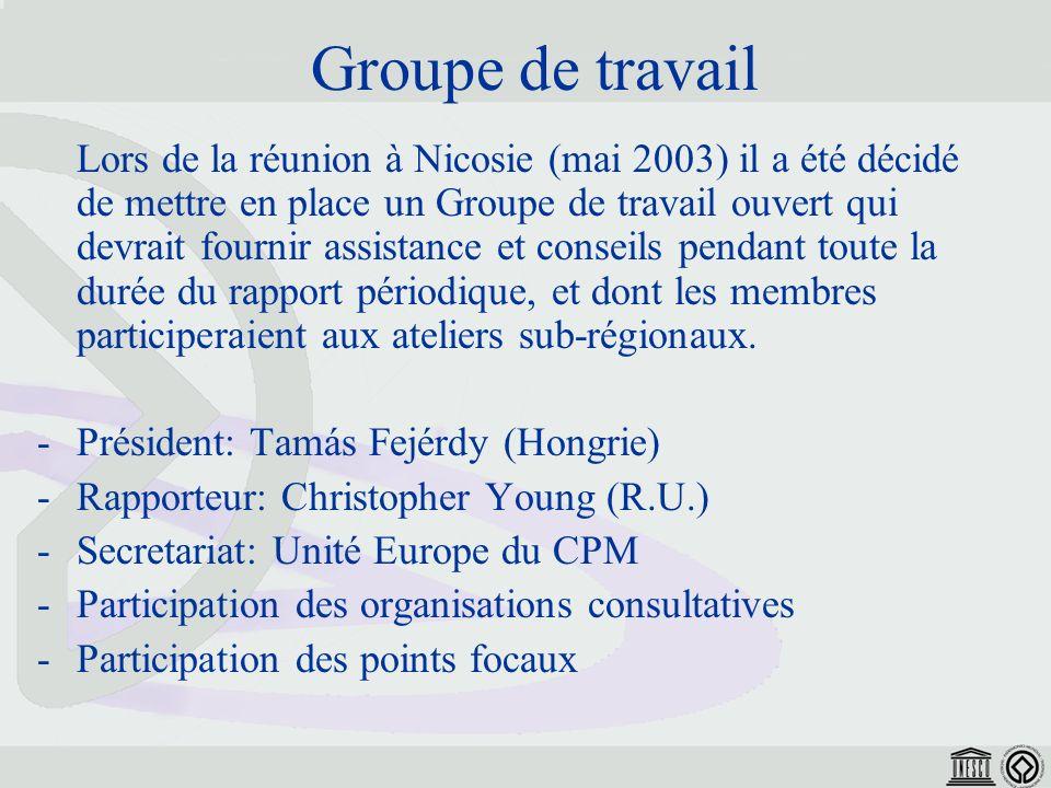 Groupe de travail Lors de la réunion à Nicosie (mai 2003) il a été décidé de mettre en place un Groupe de travail ouvert qui devrait fournir assistance et conseils pendant toute la durée du rapport périodique, et dont les membres participeraient aux ateliers sub-régionaux.