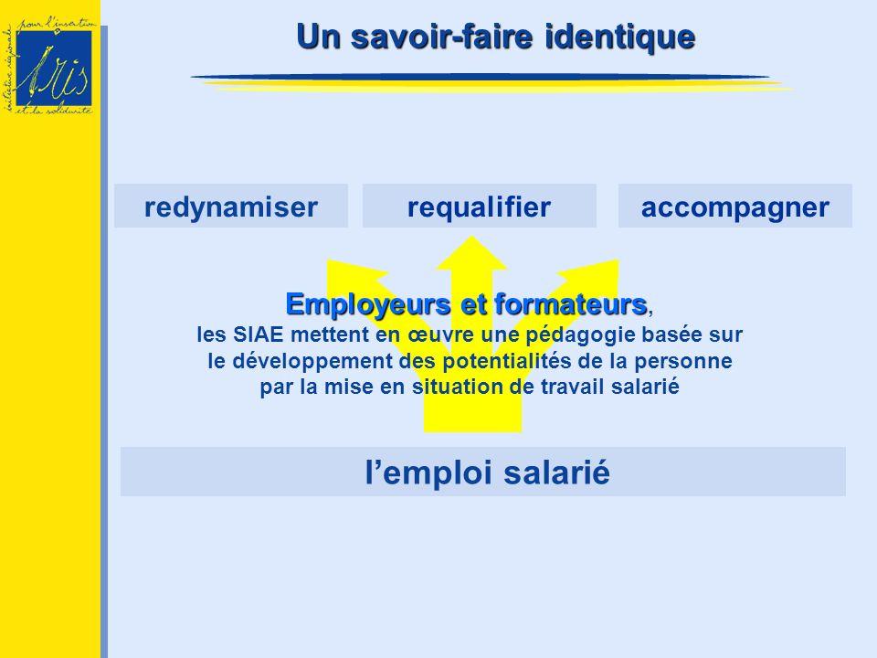 lemploi salarié accompagnerrequalifierredynamiser Employeurs et formateurs Employeurs et formateurs, les SIAE mettent en œuvre une pédagogie basée sur