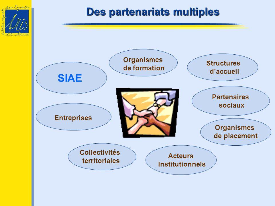 Acteurs Institutionnels Collectivités territoriales Entreprises Organismes de formation Structures daccueil Organismes de placement SIAE Partenaires s