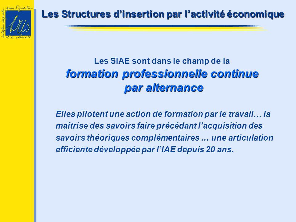 formation professionnelle continue par alternance Les SIAE sont dans le champ de la formation professionnelle continue par alternance Elles pilotent u