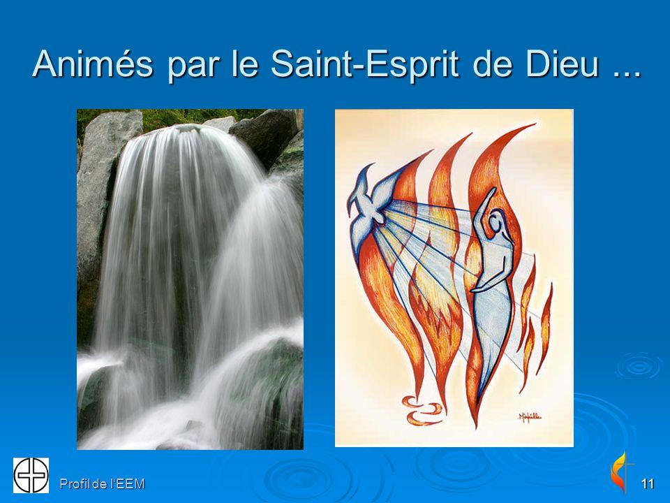 Profil de lEEM11 Animés par le Saint-Esprit de Dieu...
