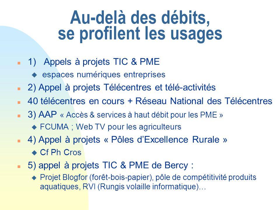 Au-delà des débits, se profilent les usages n 1) Appels à projets TIC & PME u espaces numériques entreprises n 2) Appel à projets Télécentres et télé-activités n 40 télécentres en cours + Réseau National des Télécentres n 3) AAP « Accès & services à haut débit pour les PME » u FCUMA ; Web TV pour les agriculteurs n 4) Appel à projets « Pôles dExcellence Rurale » u Cf Ph Cros n 5) appel à projets TIC & PME de Bercy : u Projet Blogfor (forêt-bois-papier), pôle de compétitivité produits aquatiques, RVI (Rungis volaille informatique)…