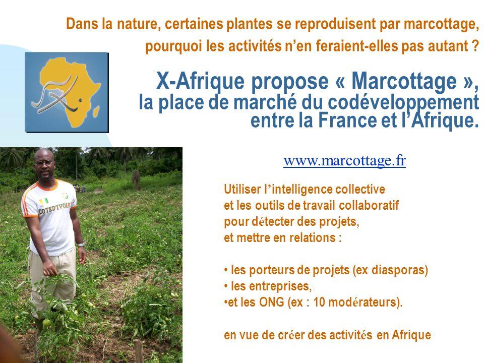 Dans la nature, certaines plantes se reproduisent par marcottage, pourquoi les activités nen feraient-elles pas autant .