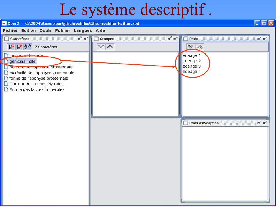 11 Le système descriptif.