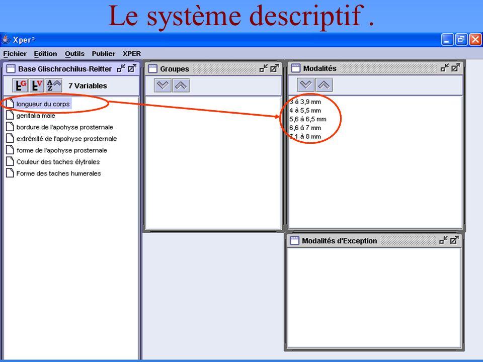 12 Le système descriptif. Les éléments servant à décrire