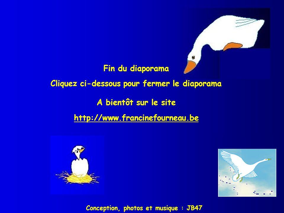 Fin du diaporama Cliquez ci-dessous pour fermer le diaporama A bientôt sur le site http://www.francinefourneau.be http://www.francinefourneau.be Conce