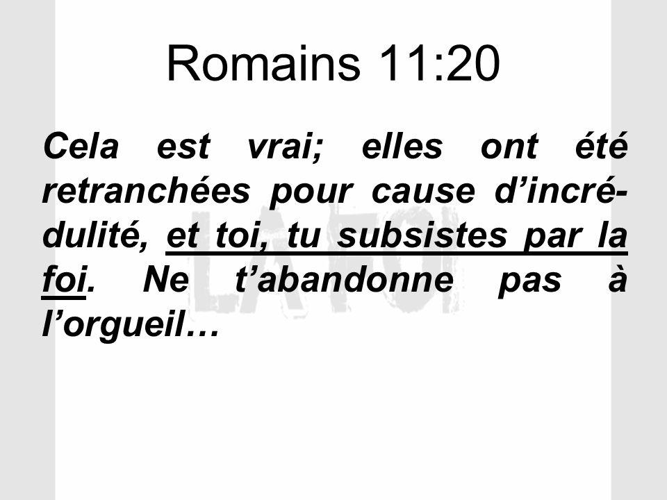 Romains 11:20 Cela est vrai; elles ont été retranchées pour cause dincré- dulité, et toi, tu subsistes par la foi. Ne tabandonne pas à lorgueil…