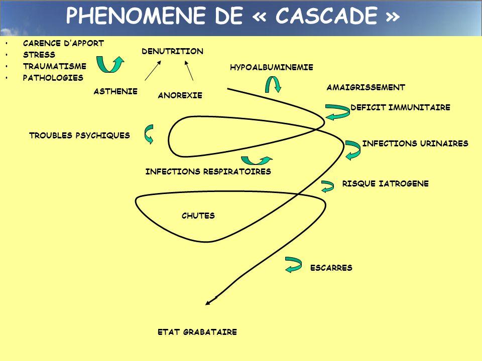 PHENOMENE DE « CASCADE » DENUTRITION ANOREXIEASTHENIE CARENCE DAPPORT STRESS TRAUMATISME PATHOLOGIES AMAIGRISSEMENT DEFICIT IMMUNITAIRE HYPOALBUMINEMI