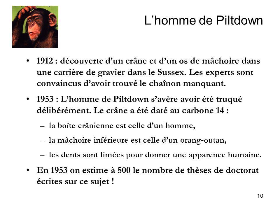 10 Lhomme de Piltdown 1912 : découverte dun crâne et dun os de mâchoire dans une carrière de gravier dans le Sussex. Les experts sont convaincus davoi