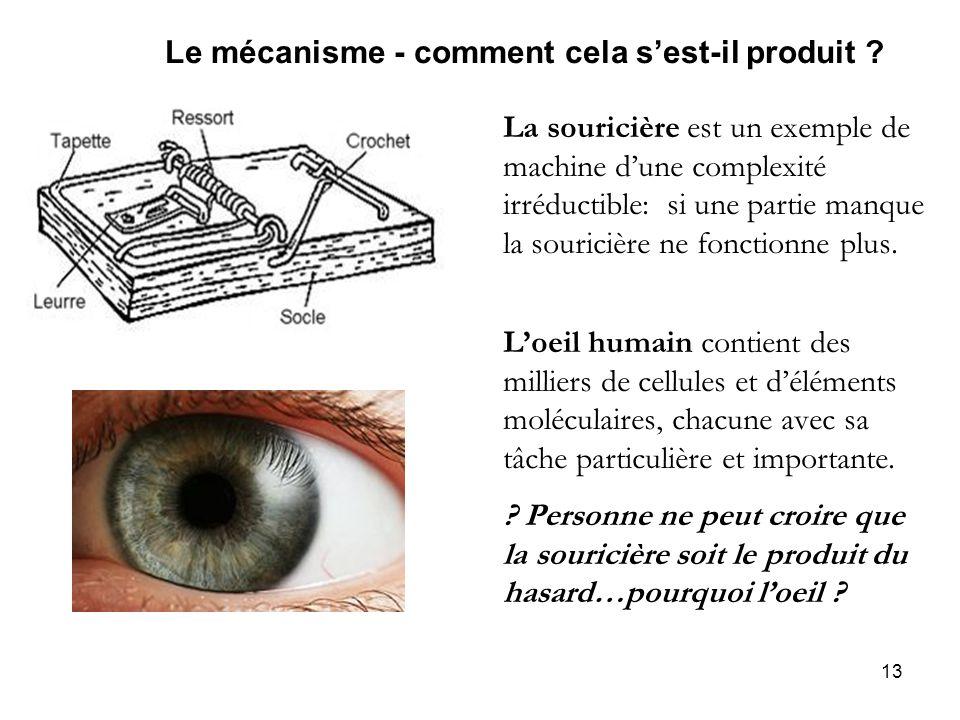 13 Le mécanisme - comment cela sest-il produit ? La souricière est un exemple de machine dune complexité irréductible: si une partie manque la sourici