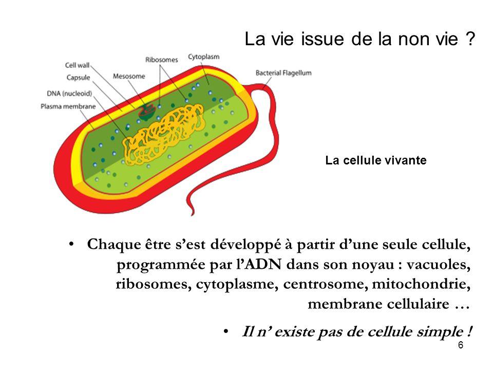 6 La vie issue de la non vie ? Chaque être sest développé à partir dune seule cellule, programmée par lADN dans son noyau : vacuoles, ribosomes, cytop