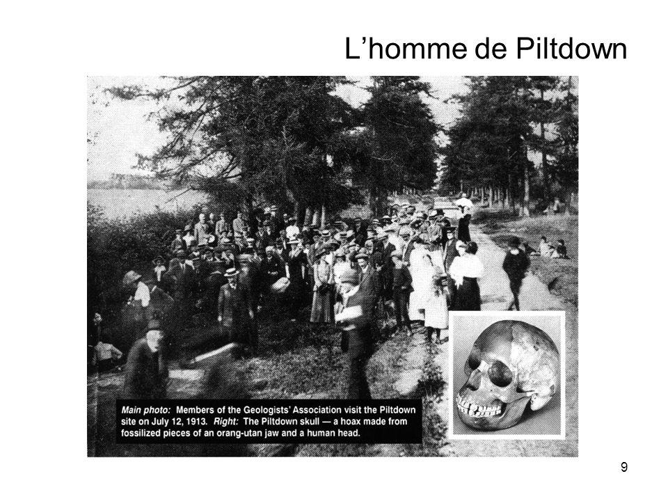 10 Lhomme de Piltdown 1912 : découverte dun crâne et dun os de mâchoire dans une carrière de gravier dans le Sussex.