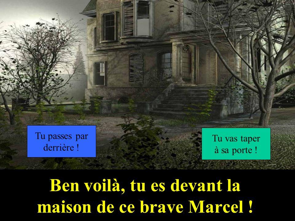Bravo, tu arrives dans le jardin de Marcel ! Tu traverses le pont ! Tu tarrêtes pour faire un tennis !