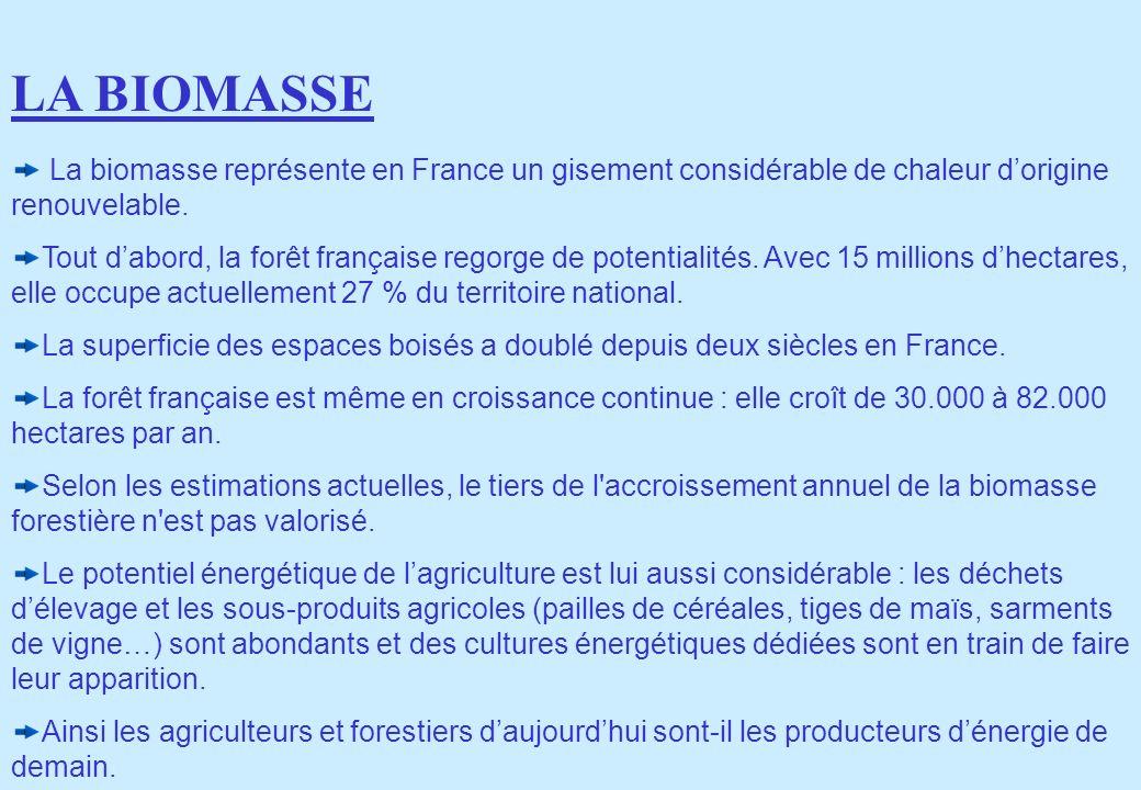 La biomasse représente en France un gisement considérable de chaleur dorigine renouvelable. Tout dabord, la forêt française regorge de potentialités.