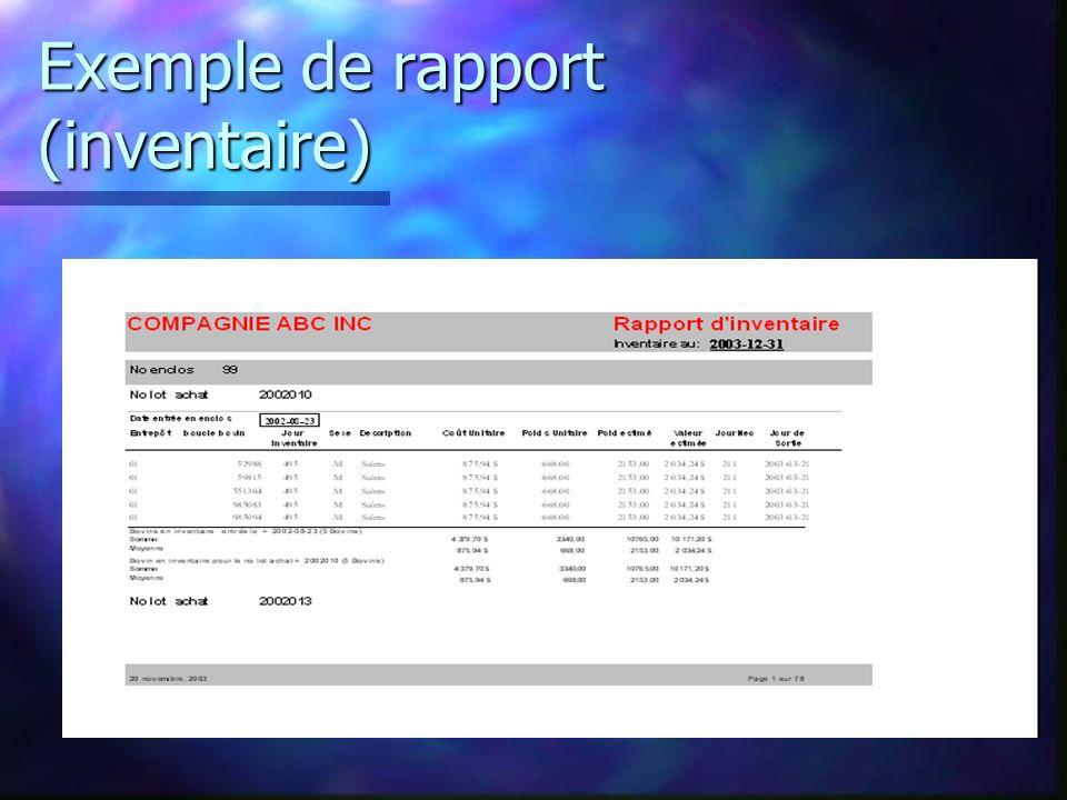 Exemple de rapport (inventaire)