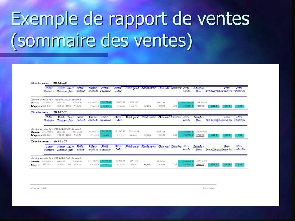 Exemple de rapport de ventes (sommaire des ventes)