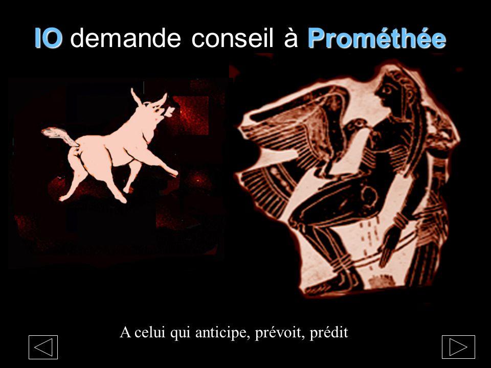 IOProméthée IO demande conseil à Prométhée A celui qui anticipe, prévoit, prédit