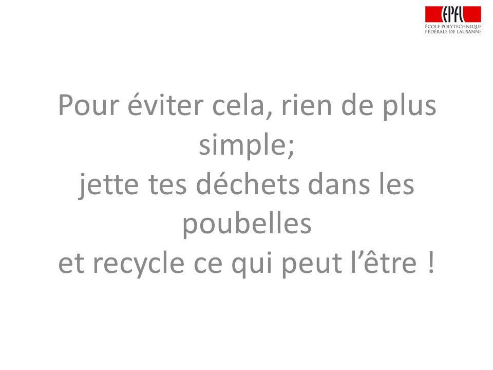Pour éviter cela, rien de plus simple; jette tes déchets dans les poubelles et recycle ce qui peut lêtre !
