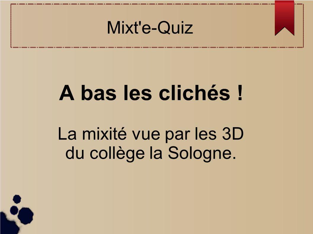 A bas les clichés ! La mixité vue par les 3D du collège la Sologne. Mixt'e-Quiz