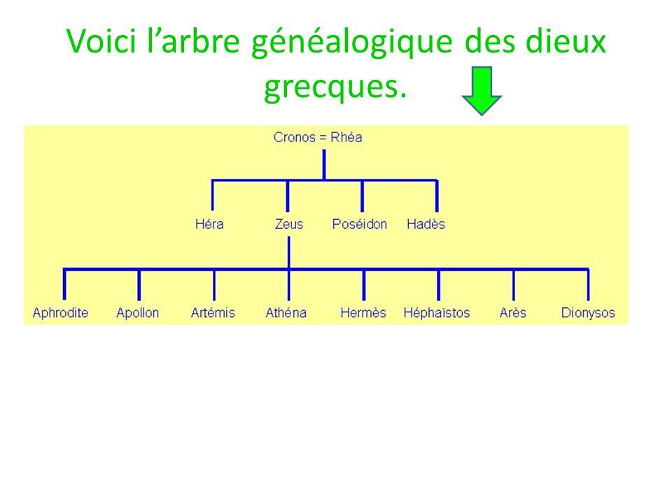 Voici larbre généalogique des dieux grecques.