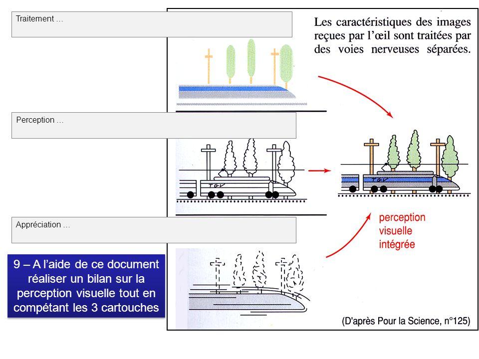 9 – A laide de ce document réaliser un bilan sur la perception visuelle tout en compétant les 3 cartouches 9 – A laide de ce document réaliser un bilan sur la perception visuelle tout en compétant les 3 cartouches Traitement … Perception … Appréciation …