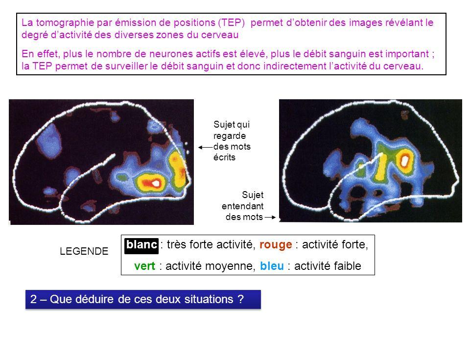 La tomographie par émission de positions (TEP) permet dobtenir des images révélant le degré dactivité des diverses zones du cerveau En effet, plus le nombre de neurones actifs est élevé, plus le débit sanguin est important ; la TEP permet de surveiller le débit sanguin et donc indirectement lactivité du cerveau.