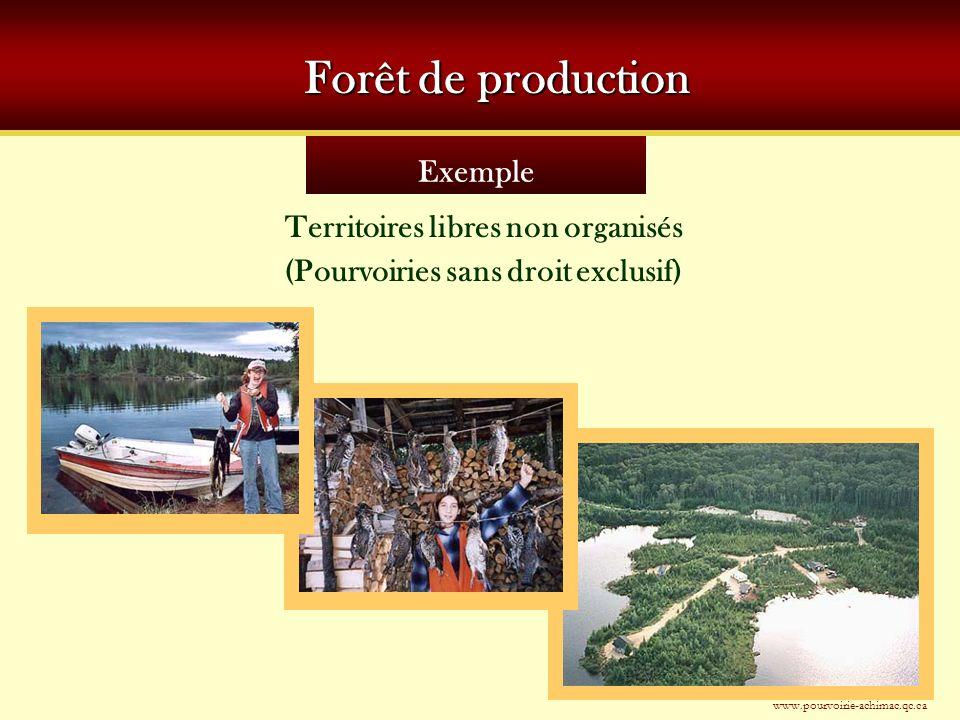 Exemple Forêt de production Territoires libres non organisés (Pourvoiries sans droit exclusif) www.pourvoirie-achimac.qc.ca