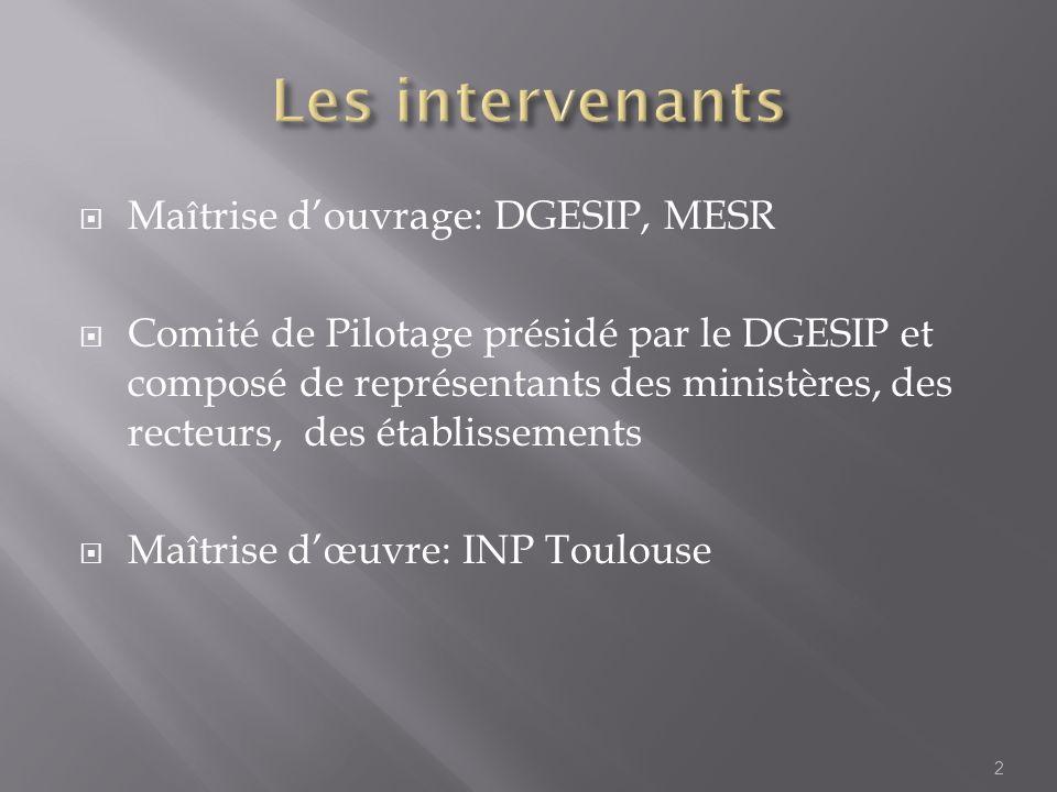 Maîtrise douvrage: DGESIP, MESR Comité de Pilotage présidé par le DGESIP et composé de représentants des ministères, des recteurs, des établissements Maîtrise dœuvre: INP Toulouse 2