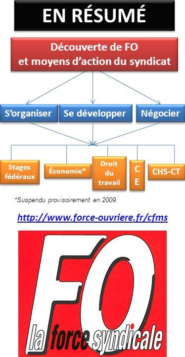 EN RÉSUMÉ Sorganiser Se développer Négocier Stages fédéraux Économie* Droit du travail CECE CECE CHS-CT *Suspendu provisoirement en 2009. http://www.f