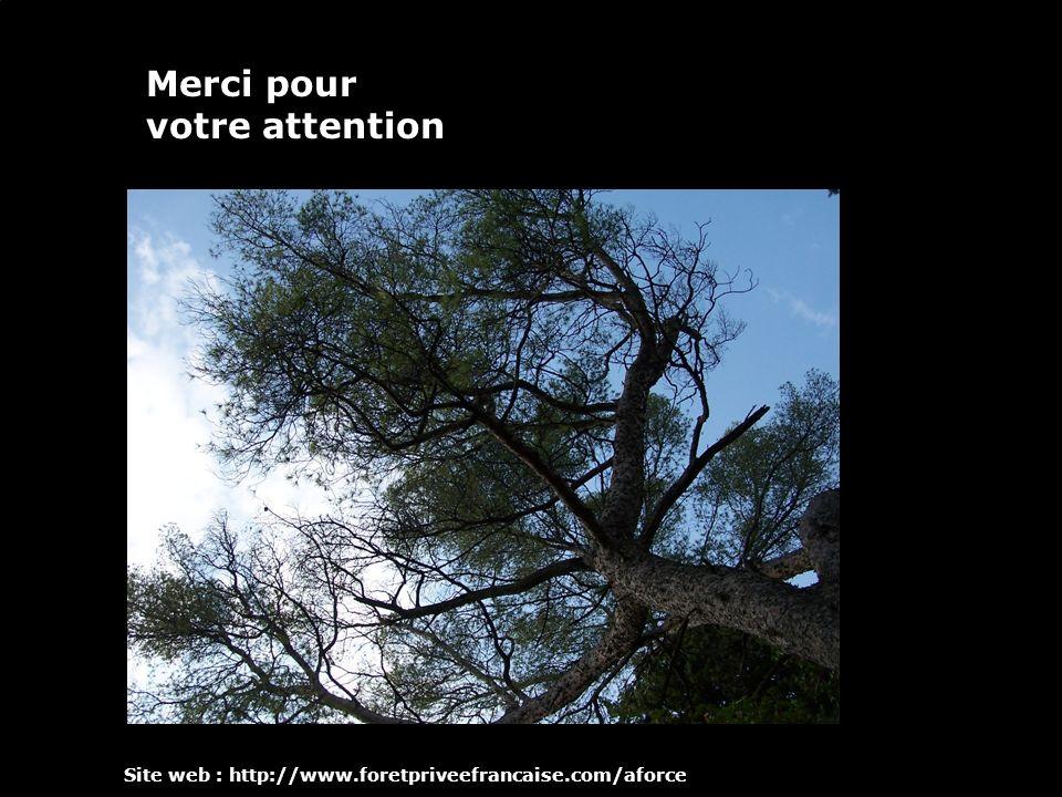 12 Merci pour votre attention Site web : http://www.foretpriveefrancaise.com/aforce