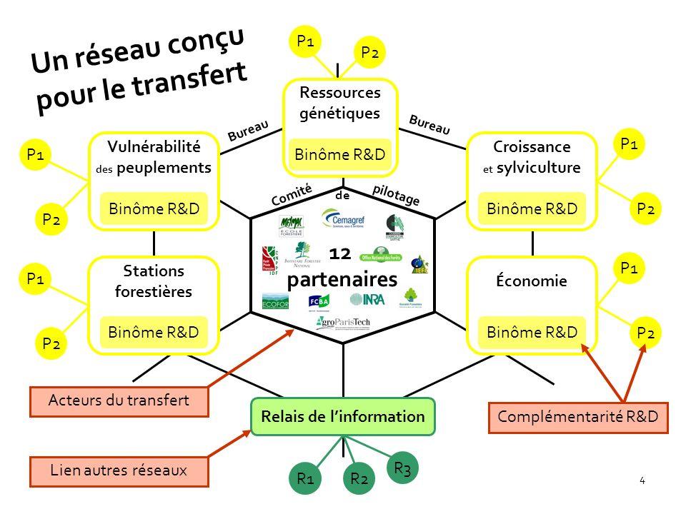 4 12 partenaires Binôme R&D P1 Relais de linformation P2 Ressources génétiques R1 R3 Vulnérabilité des peuplements Stations forestières Binôme R&D É c